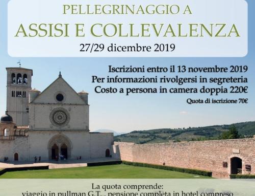 Pellegrinaggio ad Assisi e a Collevalenza